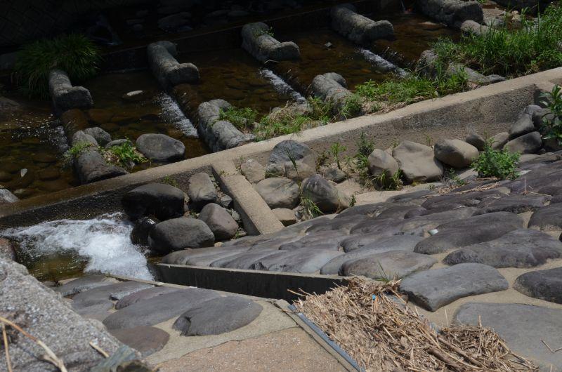 加茂川の急斜面