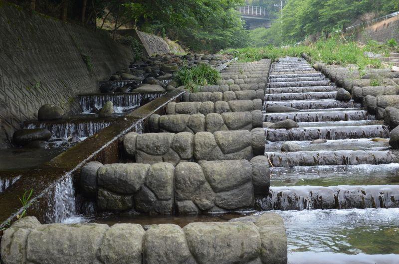 加茂川で川遊び