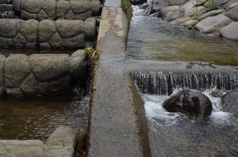加茂川すべりやすい場所