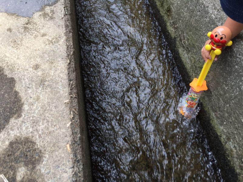 加茂川でアンパンマン水鉄砲