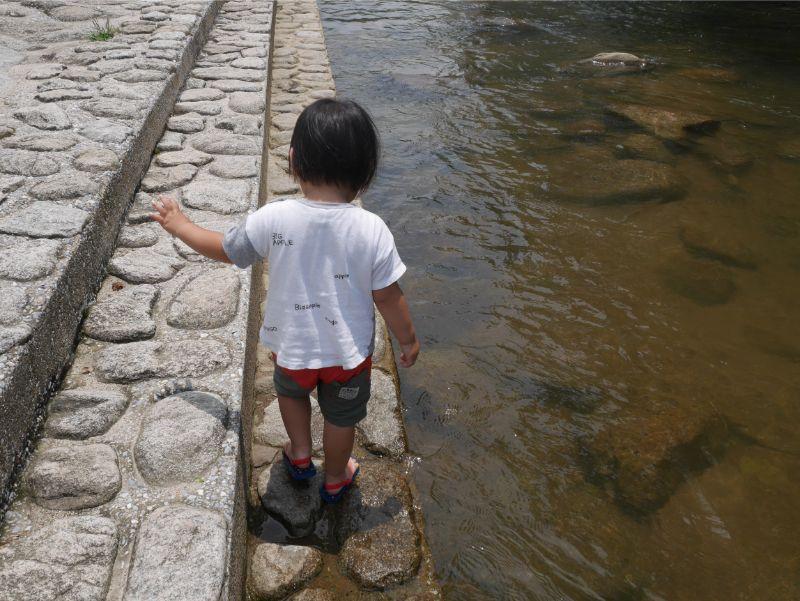 中ノ島公園の中流