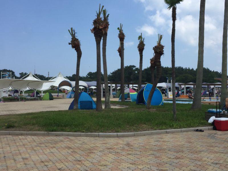 幼児プール近区の芝生テント設置場所