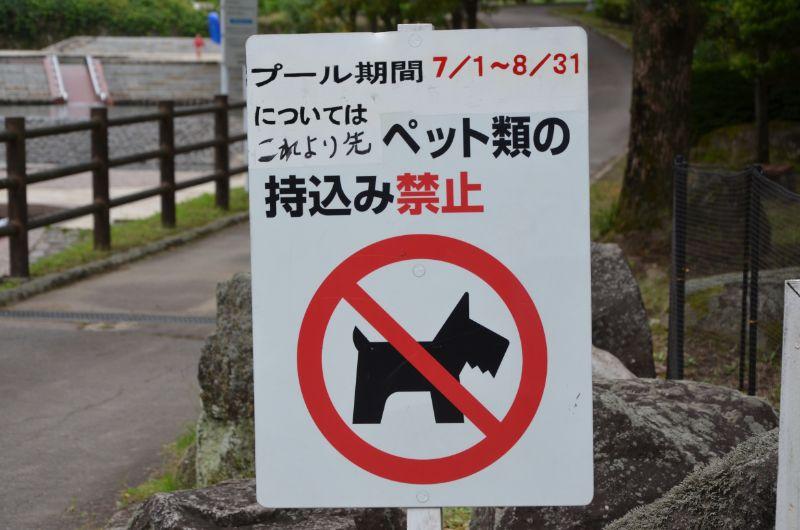 棚田親水公園のプール期間中はペット禁止