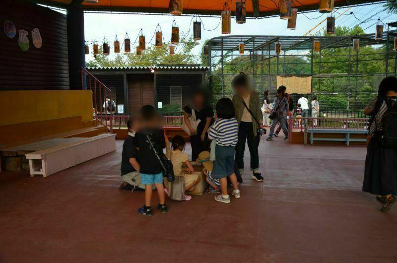 福岡市夜の動植物園のふれあい