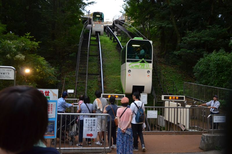 福岡市夜の動植物園の満員スロープカー