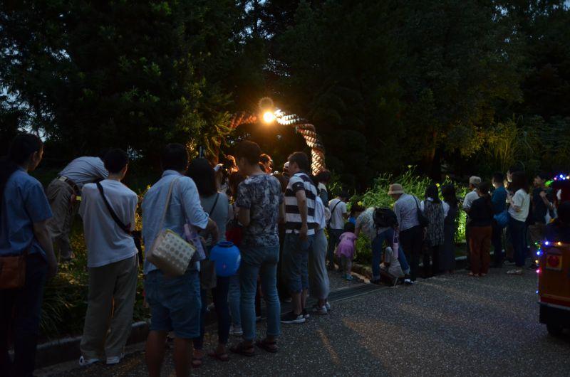 福岡市夜の動植物園の夜にしか咲かない花の混雑具合