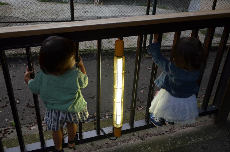 福岡市夜の動植物園のライト