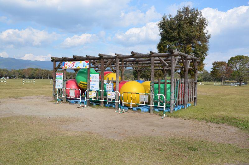 吉野ヶ里歴史公園のビッグボール