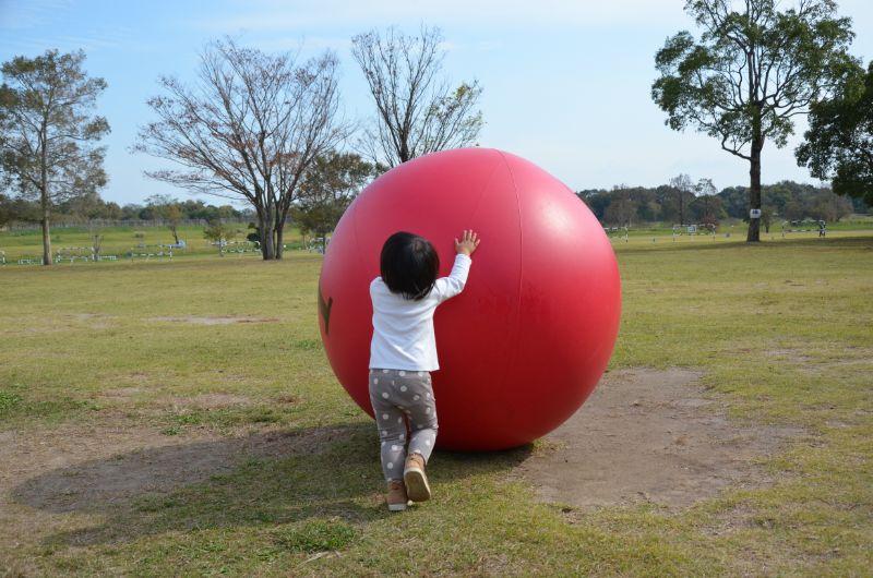 ビッグボールを満喫